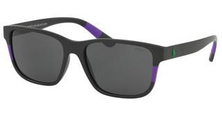 Polo PH4137 576487 DARK GREYMATTE BLACK RUBBER PURPLE