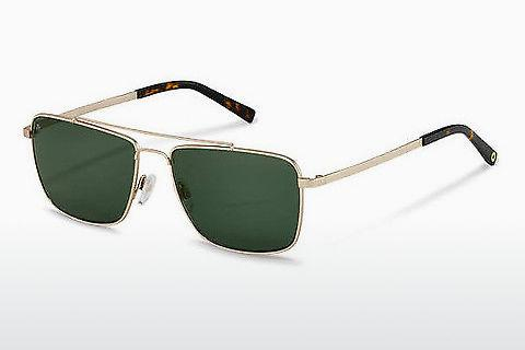 Zonnebril Rocco by Rodenstock RR104 B