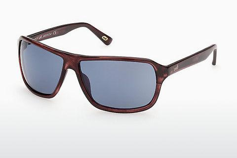 Zonnebril Web Eyewear WE0301 69V